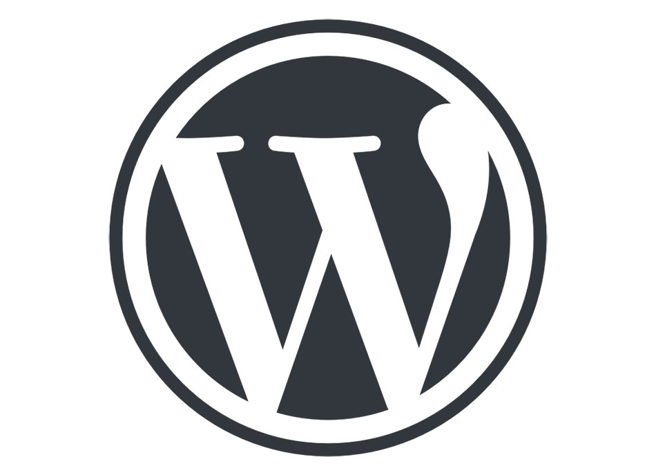 WordPress Theme Detection